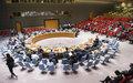 Conselho de Segurança da ONU pede a Guiné-Bissau para encontrar uma solução para a crise política, garantindo um Governo funcional