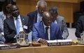 Reunião do Conselho de Segurança da ONU: Membros do Conselho reiteram importância de pacto de estabilidade na Guiné-Bissau, Primeiro-Ministro pede UNIOGBIS mais eficiente e focada