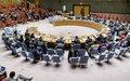 Conselho de Segurança reafirma a importância de realizar eleições legislativas genuinamente livres e justas na Guiné-Bissau até 10 de março de 2019