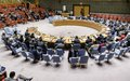 Security Council reaffirms importance of holding genuinely free and fair legislative elections in Guinea-Bissau no later than 10 March 2019