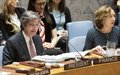 Comunicado de imprensa do Conselho de Segurança sobre a Guiné-Bissau