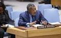 Altos funcionários da ONU no Conselho de Segurança expressam