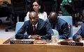 Better Coordinated, Sustained International Involvement Vital to Breaking Guinea-Bissau's Persisting Political Crisis, Security Council Told